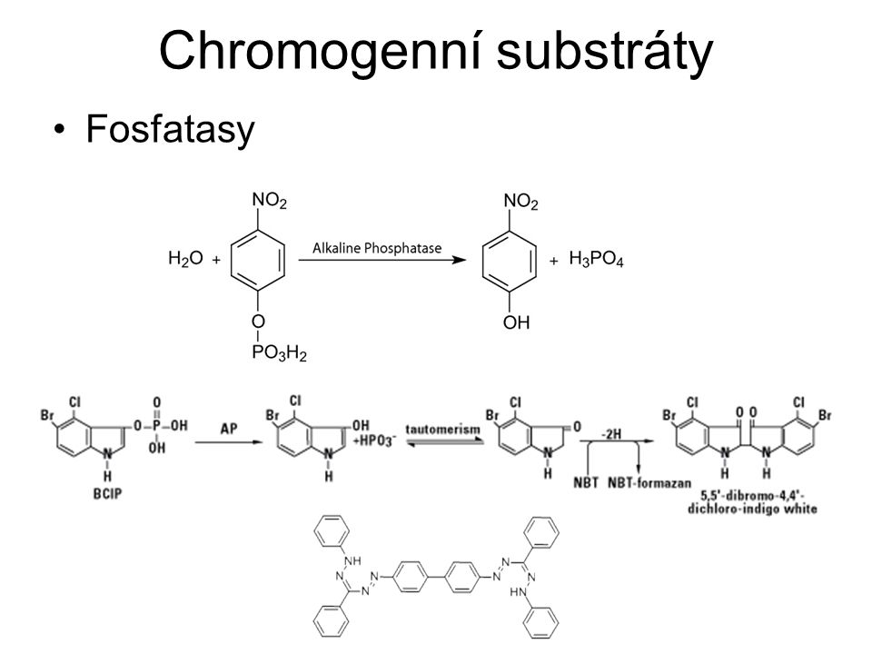 Chromogenní substráty