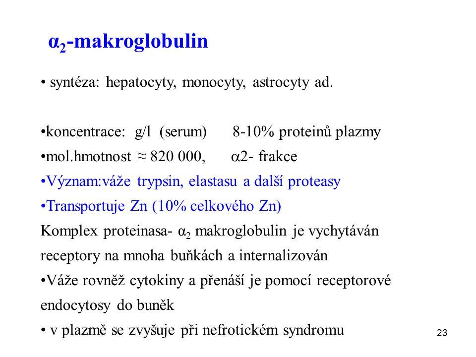 α2-makroglobulin syntéza: hepatocyty, monocyty, astrocyty ad.