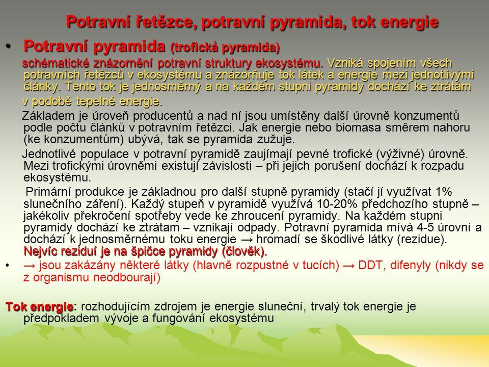 Potravní řetězce, potravní pyramida, tok energie