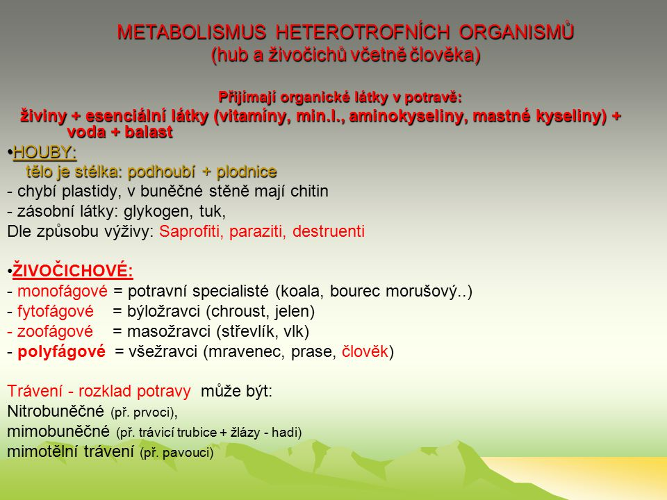 METABOLISMUS HETEROTROFNÍCH ORGANISMŮ (hub a živočichů včetně člověka)