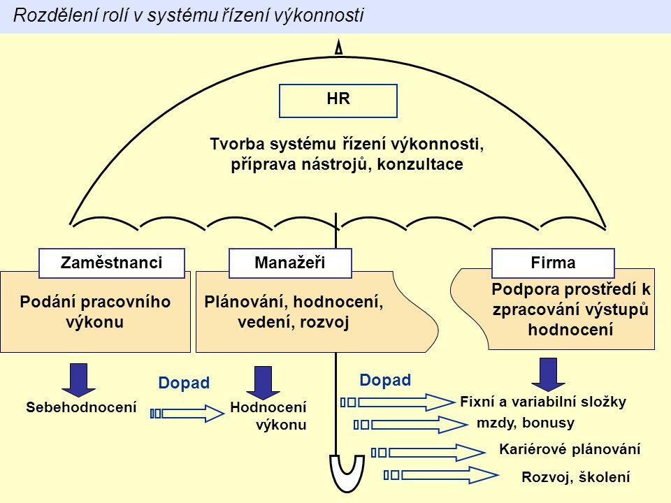 Rozdělení rolí v systému řízení výkonnosti