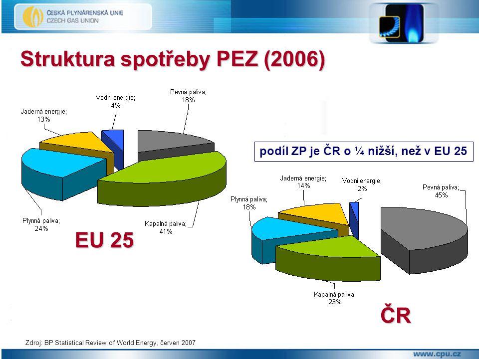 Struktura spotřeby PEZ (2006)