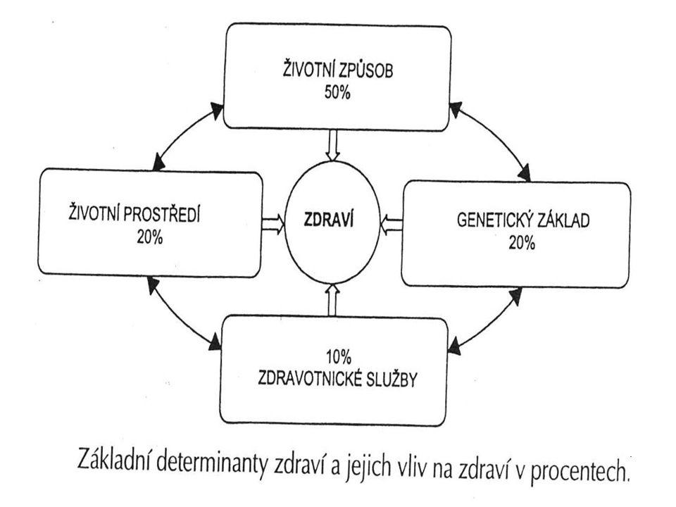 Toto schema velmi zjednodušené, např
