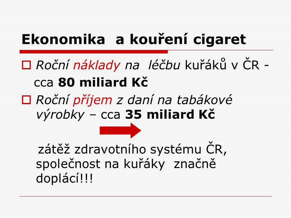 Ekonomika a kouření cigaret