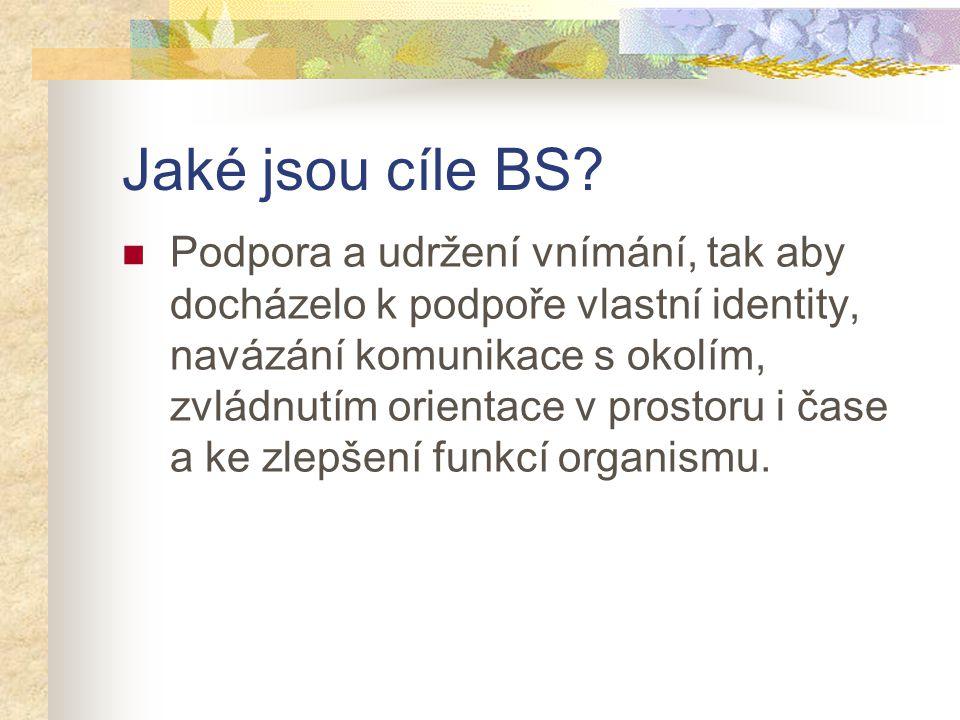 Jaké jsou cíle BS