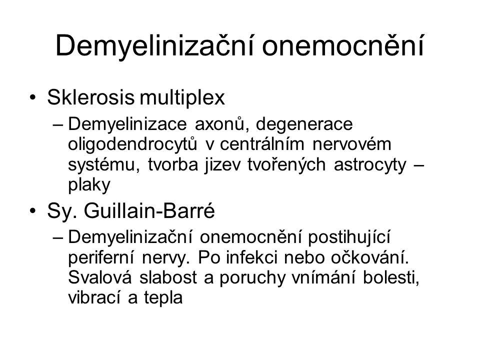 Demyelinizační onemocnění