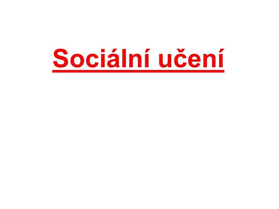 Sociální učení
