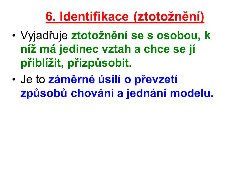 6. Identifikace (ztotožnění)