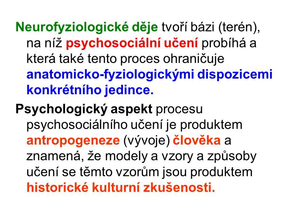 Neurofyziologické děje tvoří bázi (terén), na níž psychosociální učení probíhá a která také tento proces ohraničuje anatomicko-fyziologickými dispozicemi konkrétního jedince.