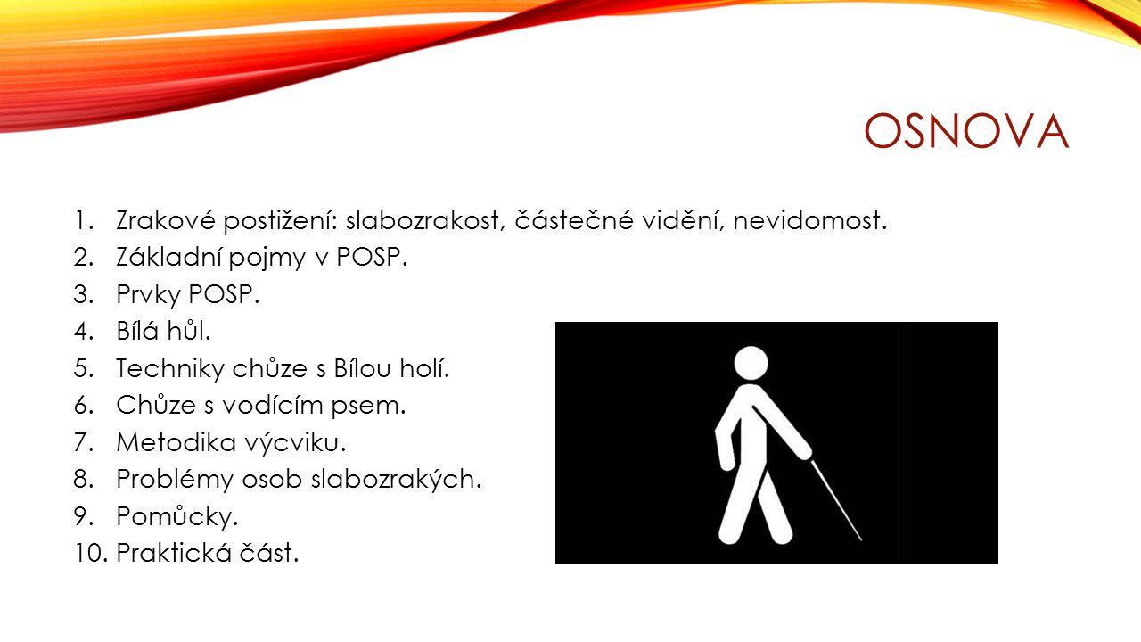 Osnova Zrakové postižení: slabozrakost, částečné vidění, nevidomost.