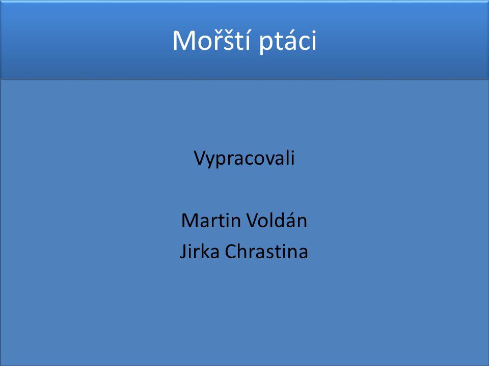 Vypracovali Martin Voldán Jirka Chrastina