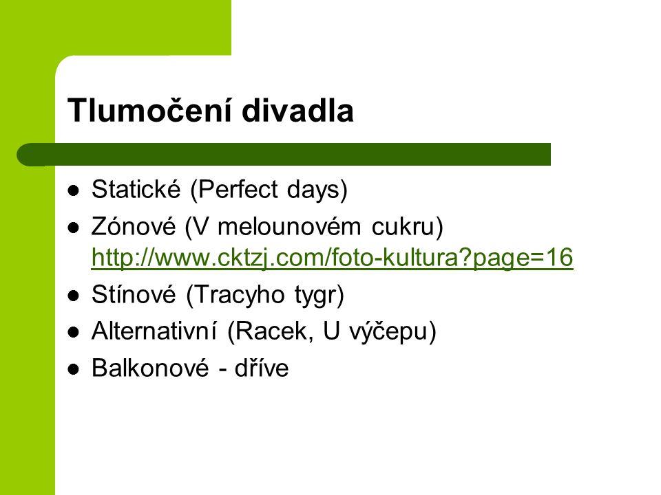 Tlumočení divadla Statické (Perfect days)