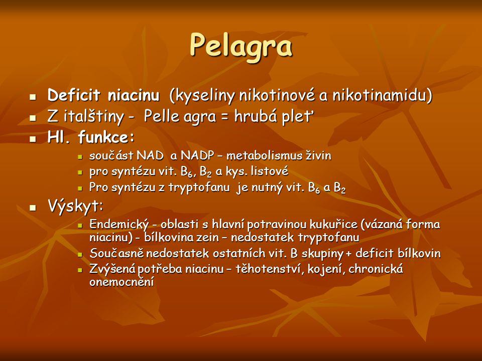 Pelagra Deficit niacinu (kyseliny nikotinové a nikotinamidu)