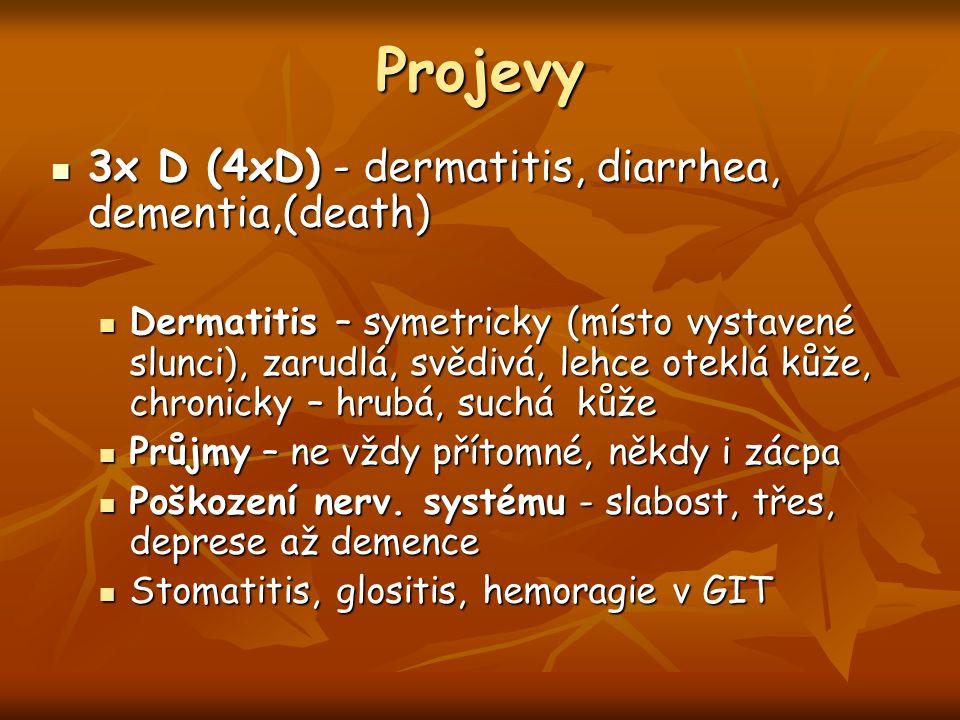 Projevy 3x D (4xD) - dermatitis, diarrhea, dementia,(death)