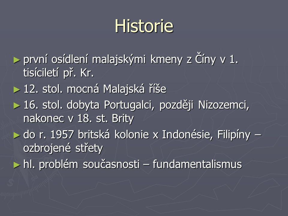 Historie první osídlení malajskými kmeny z Číny v 1. tisíciletí př. Kr. 12. stol. mocná Malajská říše.