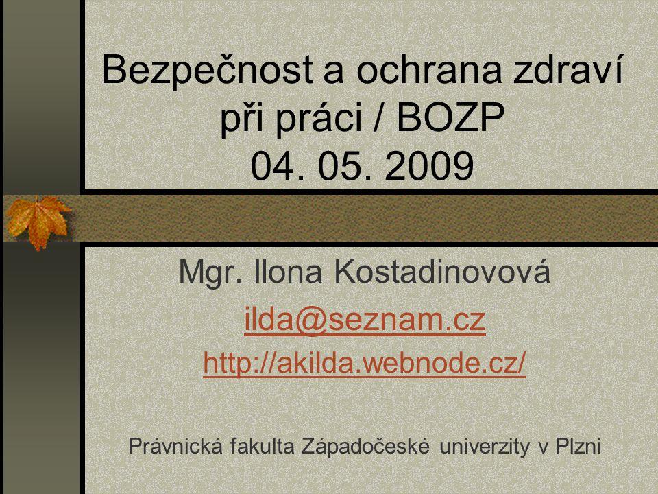 Bezpečnost a ochrana zdraví při práci / BOZP 04. 05. 2009
