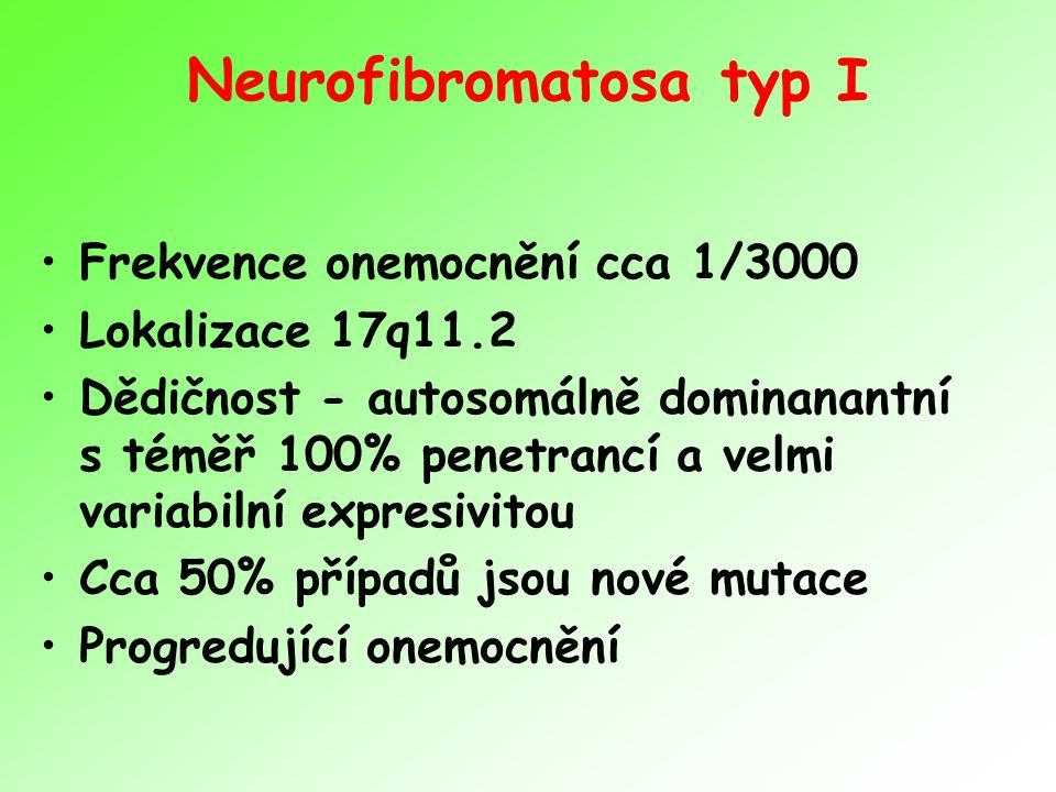 Neurofibromatosa typ I