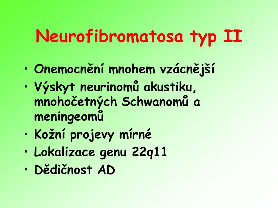 Neurofibromatosa typ II