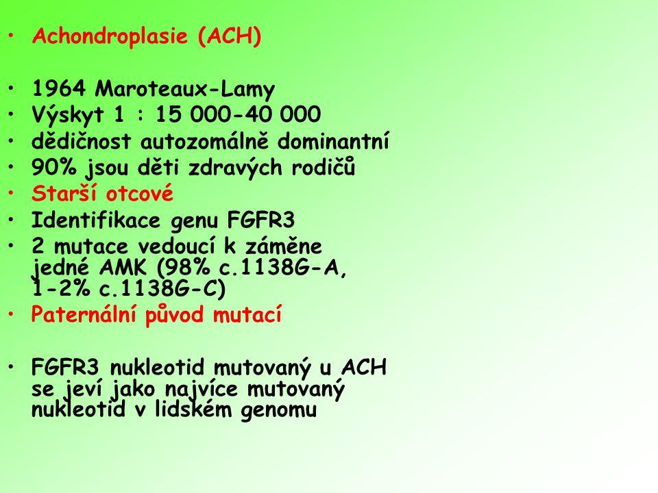 Achondroplasie (ACH) 1964 Maroteaux-Lamy. Výskyt 1 : 15 000-40 000. dědičnost autozomálně dominantní.