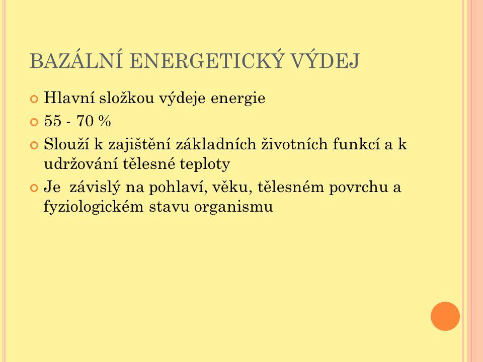 BAZÁLNÍ ENERGETICKÝ VÝDEJ