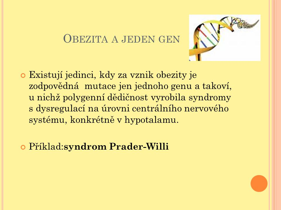 Obezita a jeden gen