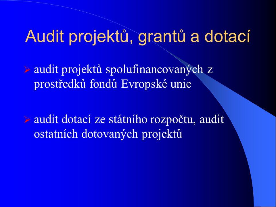 Audit projektů, grantů a dotací