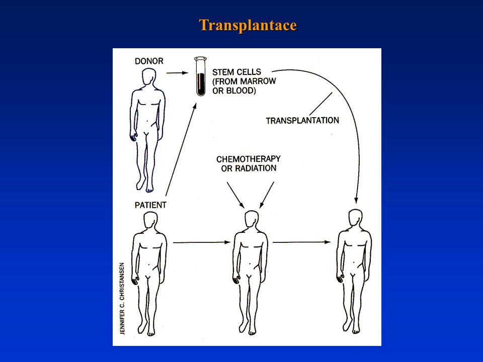 Transplantace