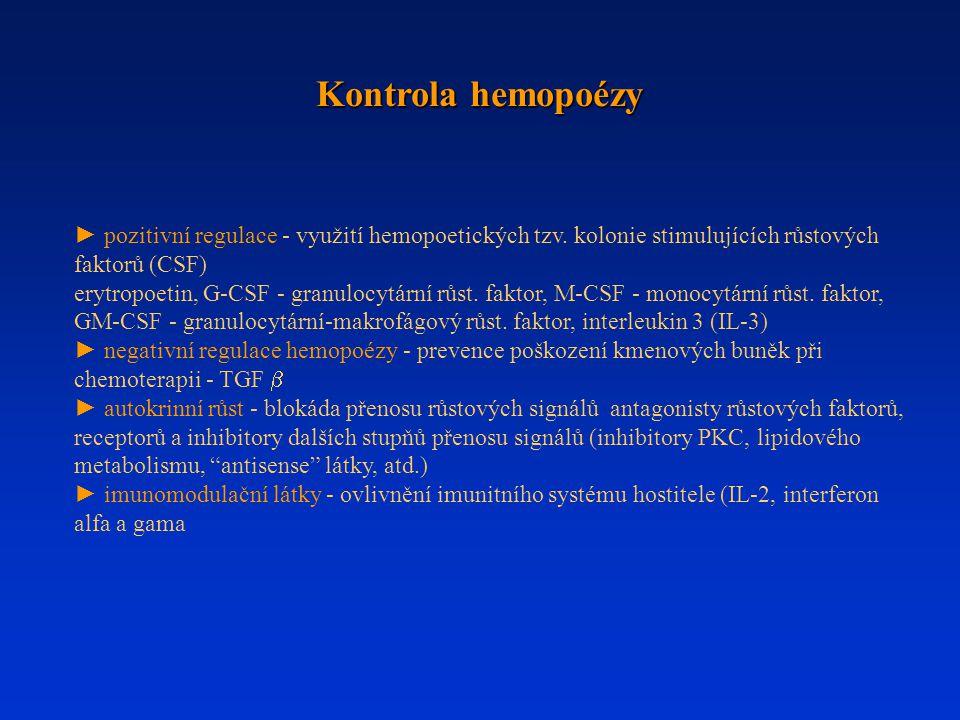 Kontrola hemopoézy ► pozitivní regulace - využití hemopoetických tzv. kolonie stimulujících růstových faktorů (CSF)