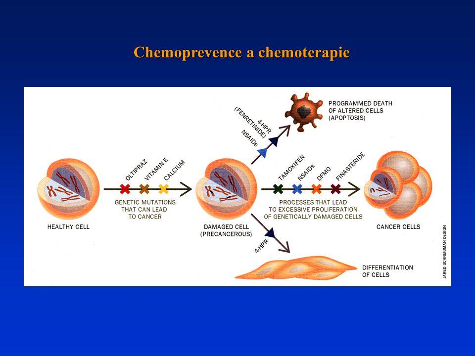 Chemoprevence a chemoterapie