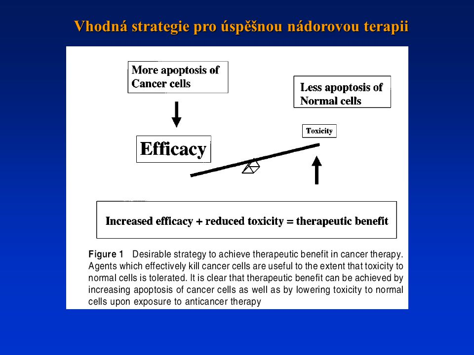 Vhodná strategie pro úspěšnou nádorovou terapii