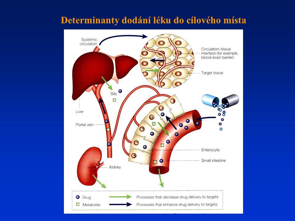 Determinanty dodání léku do cílového místa