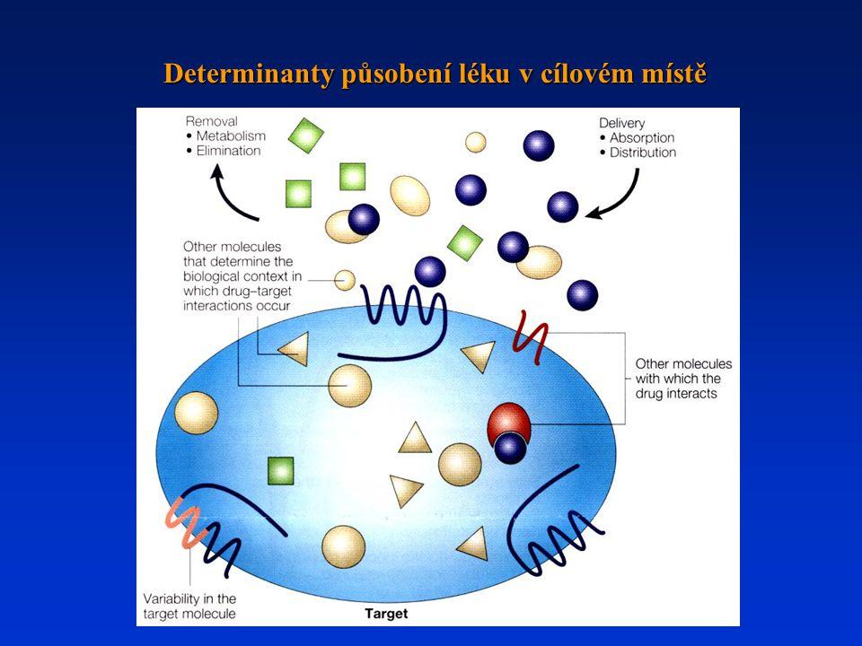 Determinanty působení léku v cílovém místě