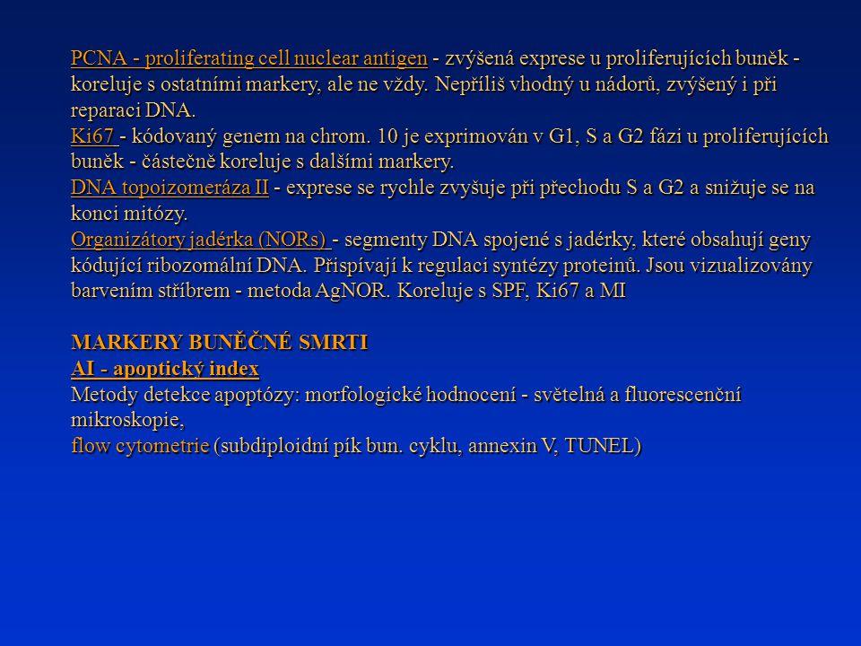 PCNA - proliferating cell nuclear antigen - zvýšená exprese u proliferujících buněk - koreluje s ostatními markery, ale ne vždy. Nepříliš vhodný u nádorů, zvýšený i při reparaci DNA.