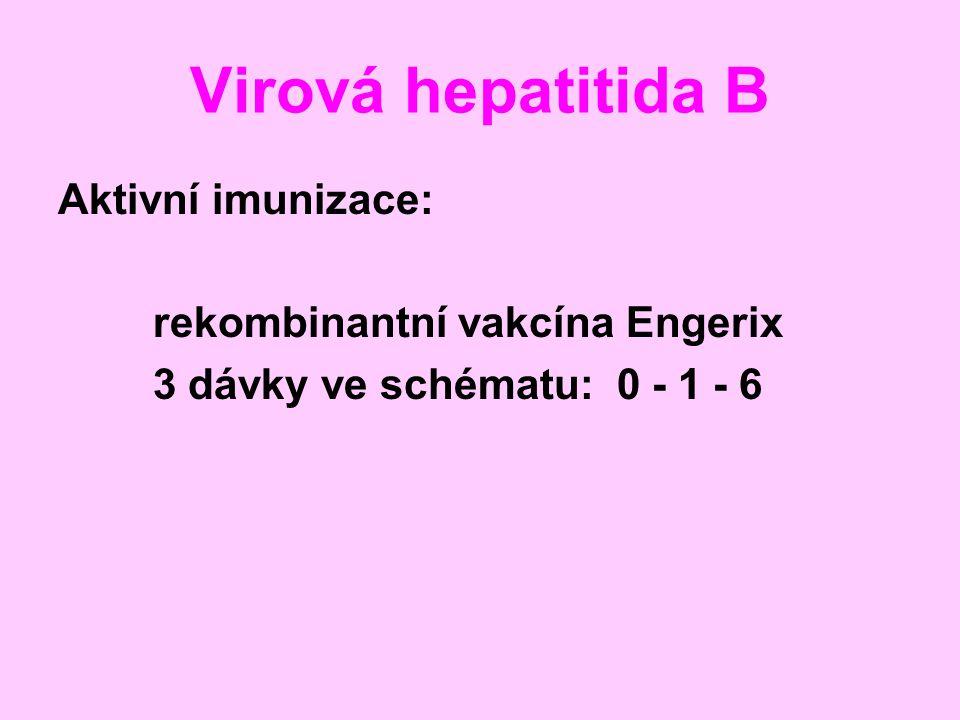 Virová hepatitida B Aktivní imunizace: rekombinantní vakcína Engerix