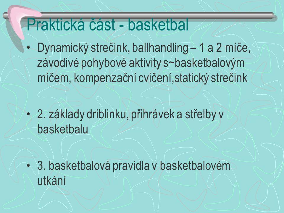 Praktická část - basketbal