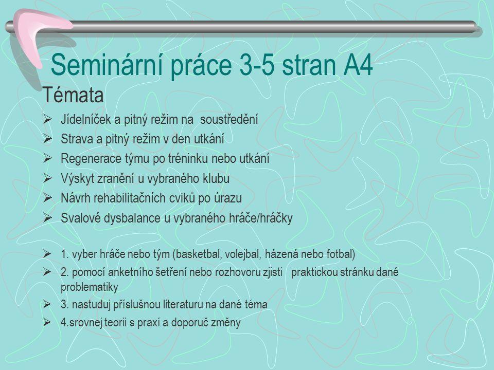 Seminární práce 3-5 stran A4
