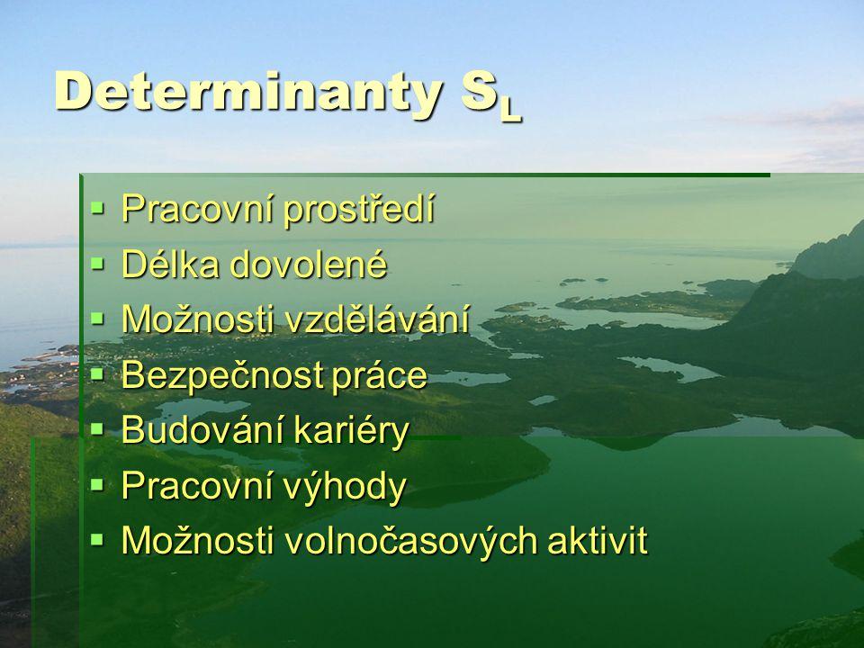 Determinanty SL Pracovní prostředí Délka dovolené Možnosti vzdělávání