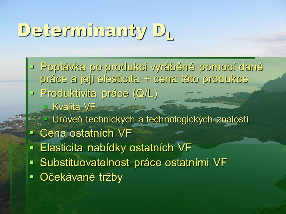 Determinanty DL Poptávka po produkci vyráběné pomocí dané práce a její elesticita + cena této produkce.