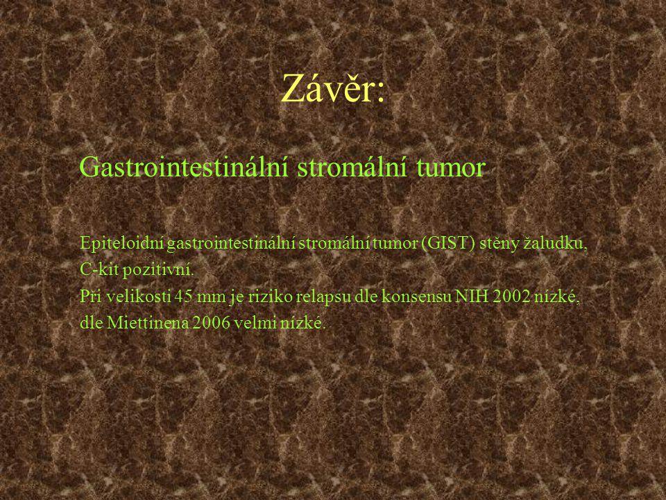 Závěr: Gastrointestinální stromální tumor
