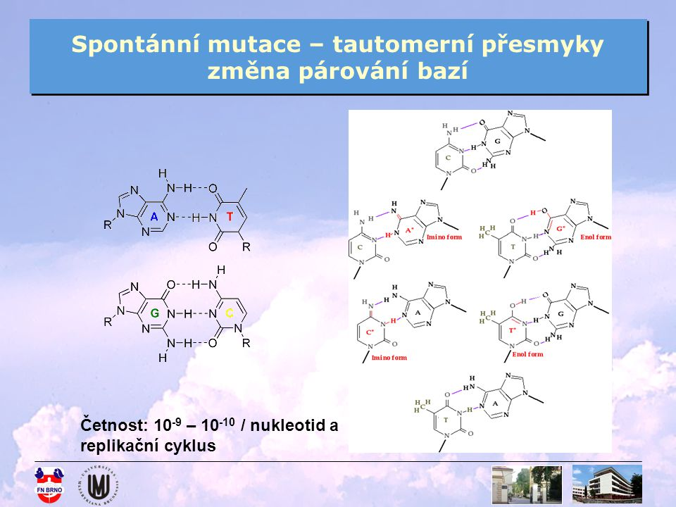 Spontánní mutace – tautomerní přesmyky změna párování bazí