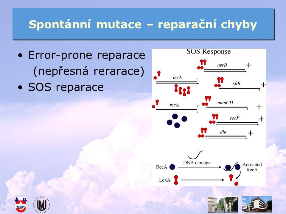 Spontánní mutace – reparační chyby