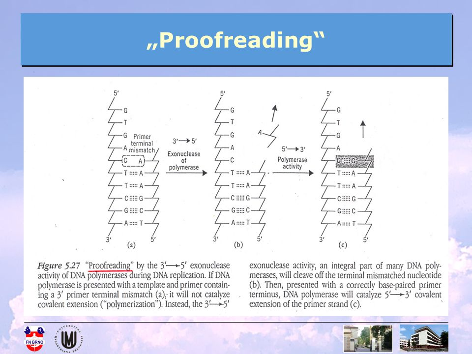 """Proofreading"