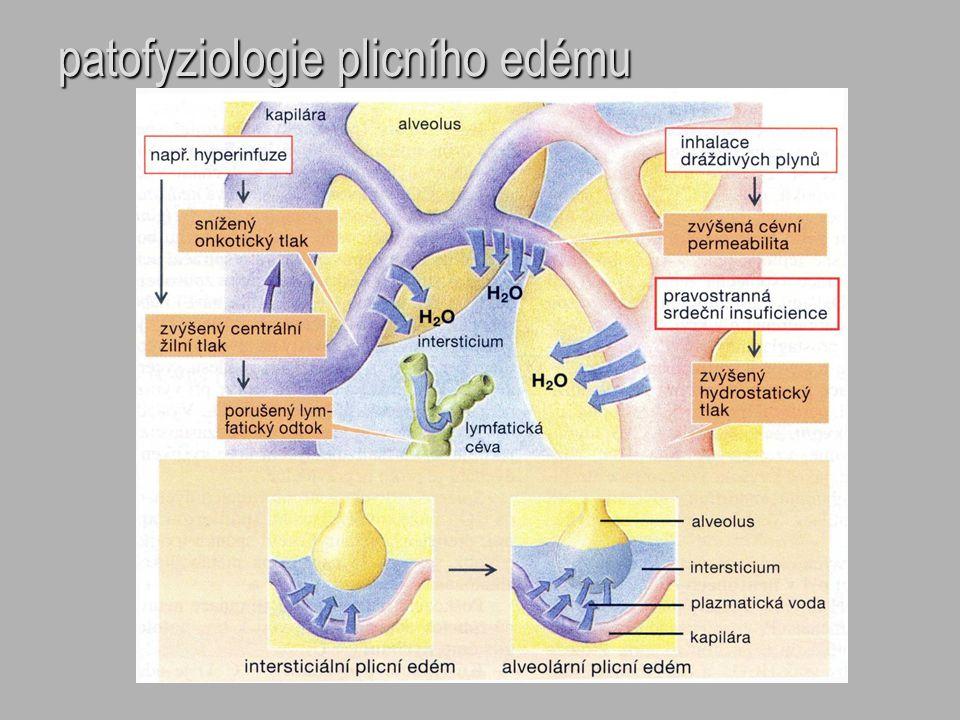patofyziologie plicního edému