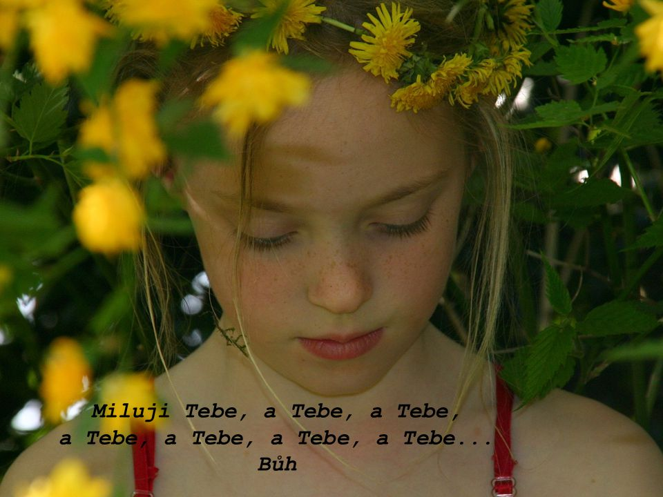 Miluji Tebe, a Tebe, a Tebe, a Tebe, a Tebe, a Tebe, a Tebe...