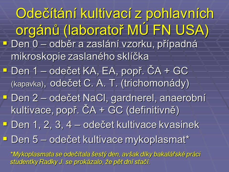 Odečítání kultivací z pohlavních orgánů (laboratoř MÚ FN USA)