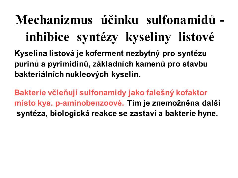 Mechanizmus účinku sulfonamidů - inhibice syntézy kyseliny listové