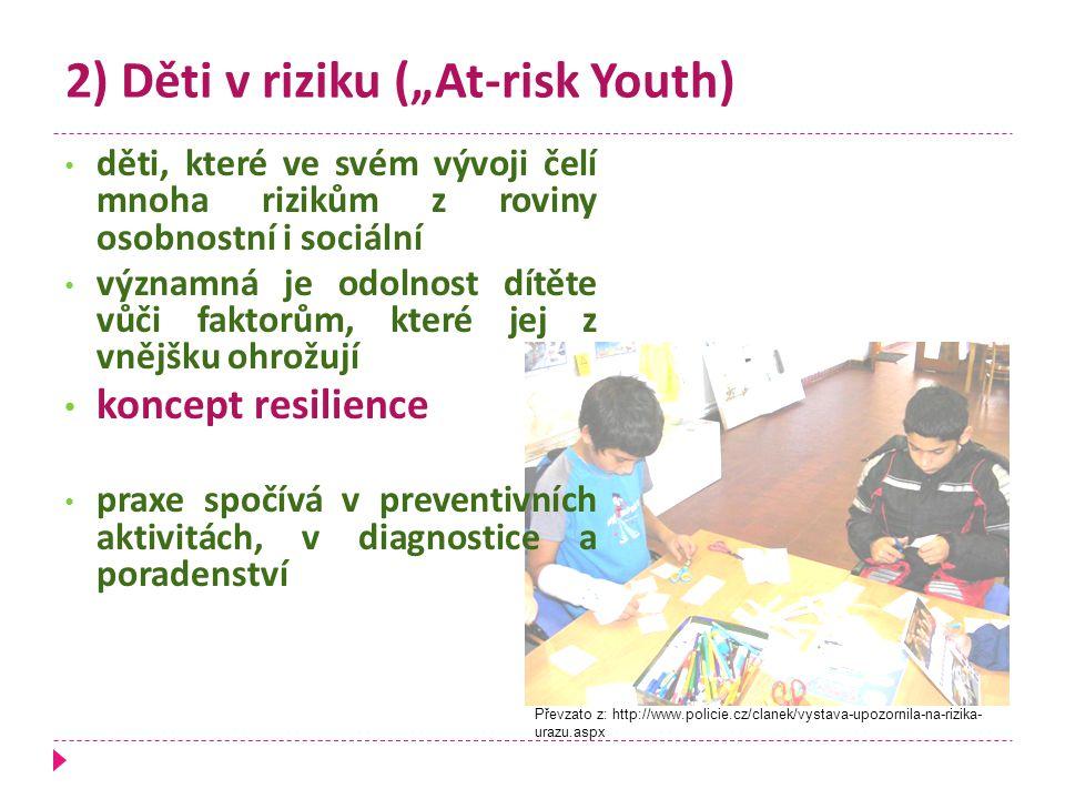 """2) Děti v riziku (""""At-risk Youth)"""