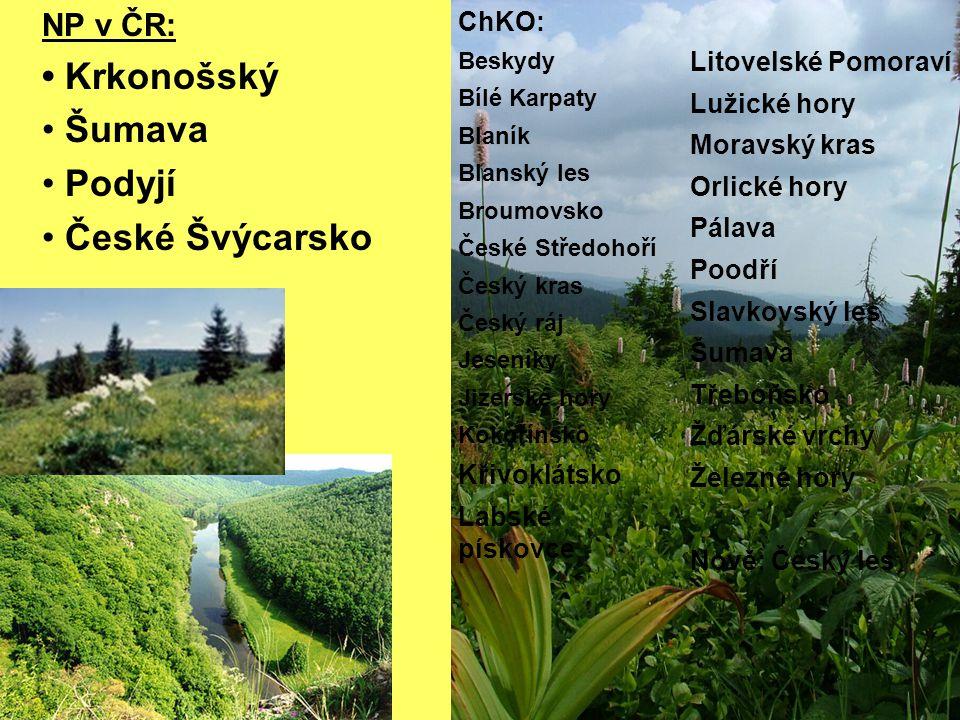 • Krkonošský Šumava Podyjí České Švýcarsko NP v ČR: ChKO: Křivoklátsko