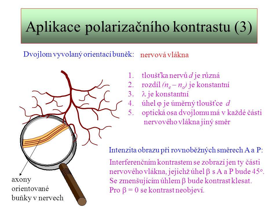 Aplikace polarizačního kontrastu (3)