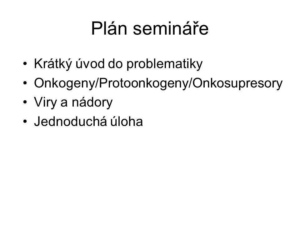Plán semináře Krátký úvod do problematiky